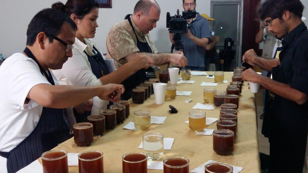 Judges cup robusta at the Taza Dorada in Ecuador.  Photo by CRS.